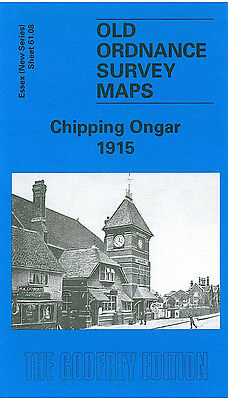 Old Ordnance Survey Map Chipping Ongar 1915 High Street Marden Ash Greensted