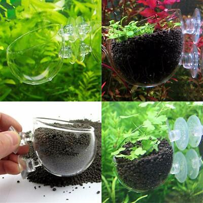 3x Red Shrimp Aquarium fish Tank aquatic Crystal Glass Pot Plant Cup Holder