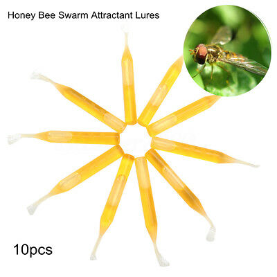 10x Honey Bee Swarm Attractant Lures Bait Trap Beekeeping Fruits Equipment Tool