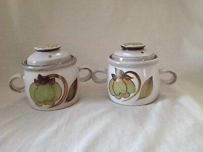 2 X Denby Troubadour Two Handled Lidded Soup Bowls Excellent Condition First