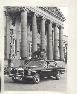 1972 Mercedes Benz 250C 250CE ORIGINAL Factory Photo & Press Sheet wy4521