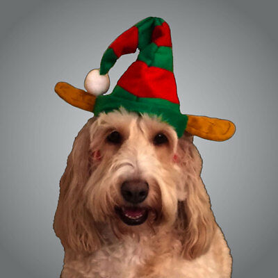 Pet Elf Hat - Christmas Day Outfit - Cute Elf Hat - Fancy Dress Up Dog Cat