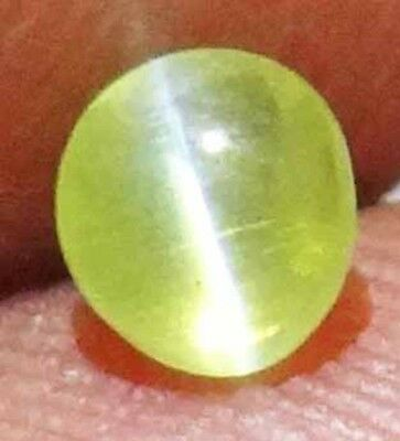 CHRYSOBERYL CAT'S EYE Natural 0.55 CT 4.47 X 4.09 X 3.45 MM 14031442