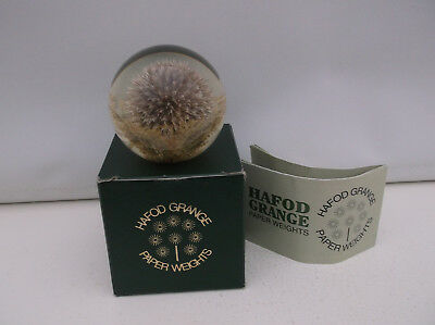 "Hafod Grange Botanical Briefbeschwerer ""Distel"" Resin Paperweight ""Thistle"""