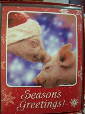 Leanin Tree Christmas Card Set Adorable Pigs Kissing 12Pk New !