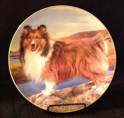 Danbury Mint Shetland Sheepdog Decorative Plate Summer Outing Limited Edition