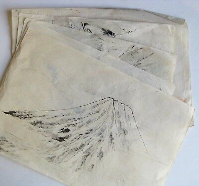 Fine Old Lot of 5 Japanese Nature & Various Ink Brush Scroll Paintings   a