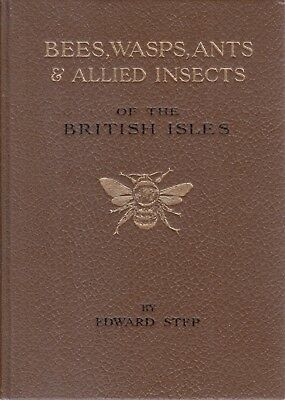 Bees, Wasps, Ants and Allied Insects of the Bri... - Edward Step - First Edit...