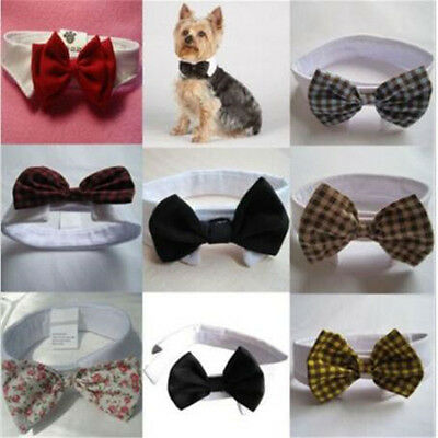 Adorable Lovely Dog Cat Pet Puppy Kitten Toy Bow Tie Necktie Collar Clothes Gift