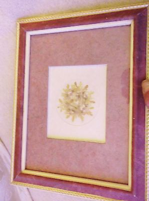 Small Very Pretty Gilt Pink Leather Look Frame Glazed Pressed Flowers & Leaves