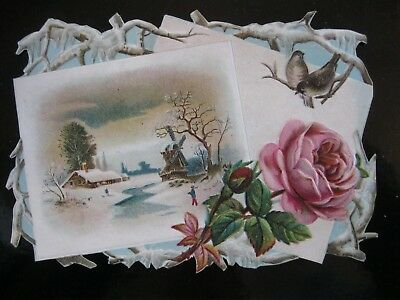 Victorian Trade Card 1800's Christmas Rose Winter Home Die Cut  A