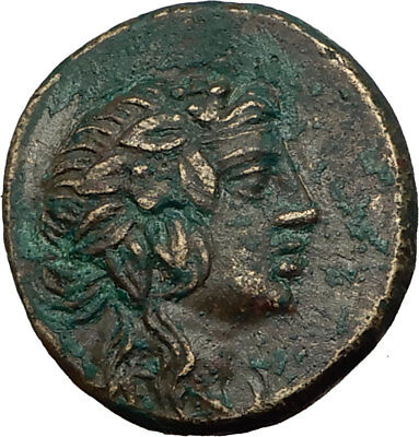 AMISOS in PONTUS 100BC Mithradates VI Time Ancient Greek Coin DIONYSUS i65508
