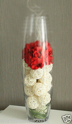 Office/Home Decoration Simple Transparent Glass Vase + Red Artificial Flower