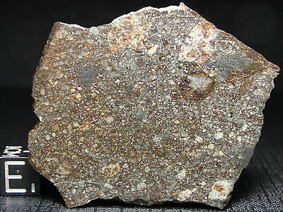 NWA 10584 Official Classified Meteorite - L5-W1-S1 - G614-0010 - 11.45g A+ Slice