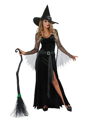 Rich Witch Womens Adult Sorceress Costume