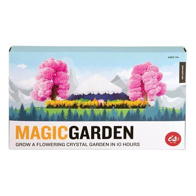 Magic Garden Flowering Crystals - Grow Crystal Science Chemistry Coloured