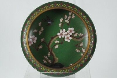 Stunning Antique Chinese Green Prunus Cloisonne Bowl