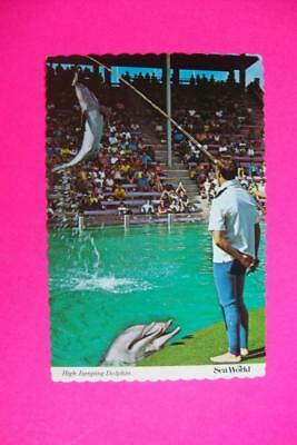 630) San Diego California Sea World's High Jumping Dolphin Performance 1980