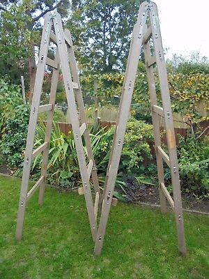 Vintage Pair of Large Decorators Builders Trestle Ladders Shop Display