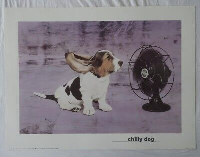 "Plakat Poster - ""chilly dog"" - 1991 - Basset Hound"
