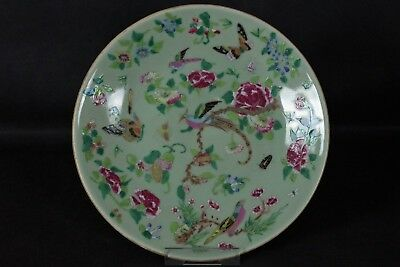 Stunning Large Antique Chinese Hand-painted Celadon Plate - with mark