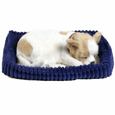 Perfect Petzzz Hundebaby Welpen atmende Haustiere Kuscheltier Chihuahua 96262
