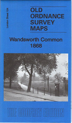 Old Ordnance Survey Map Wandsworth Common 1868 Garratt Green Earlsfield