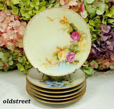 6 Beautiful Limoges Porcelain Plates ~ Hand Painted ~ Floral ~ Gold