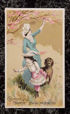 Girl & Mother with Dog Pick Flowers Domestic Sewing Machine Victorian Trade Card