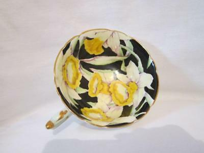 Paragon Bone China England Cup Only Black W/yellow & White Daffodils