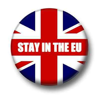 Stay In The EU 1 Inch / 25mm Pin Button Badge Referendum European Union Brexit