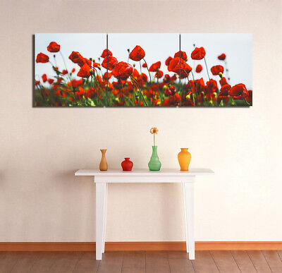 """Wall Modern Art Picture Home Decor Canvas Print Painting Red Poppies 16x16""""x3pc"""
