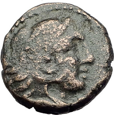 AMPHIPOLIS in Macedonia 147BC RARE R1 Ancient Greek Coin HERCULES & LION i64264
