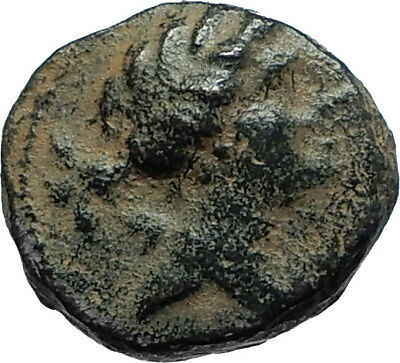SELEUKOS III Keraunos 225BC Seleukid Ancient Greek Coin ARTEMIS & APOLLO i66160