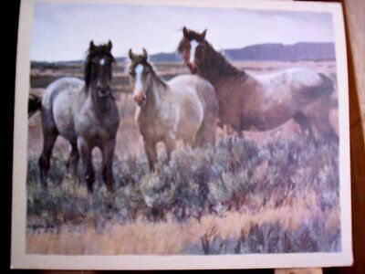 13  Wild Mustangs Horse  Blank Note Cards by Nancy Glazier NIB