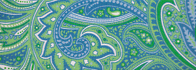 Country Brook Design® 2 Inch Green Paisley Polyester Webbing, 5 Yards