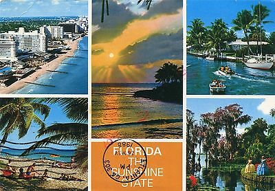 Alte Postkarte - Florida the Sunshine State