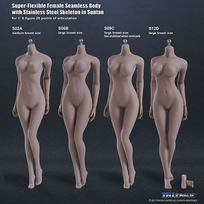 US 1/6 TBLeague Phicen Female Seamless Pale/Suntan Steel Skeleton Figure Body