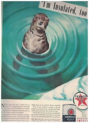 Surprised Seal in 1940 Texaco Havoline Motor Oil Ad - Distilled and Insulated