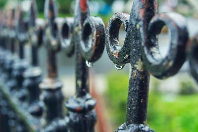 Close Up Of Rain On Black Iron Fence During Photo Art Print Poster 24x36 inch
