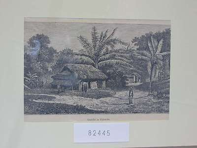 82445-Sri Lanka-Ceylon-Colombo-T Holzstich-Wood engraving