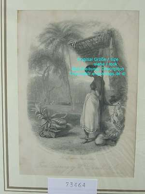 73464-Asien-Asia-Indien-India-Indian Fruit Seller-Stahlstich-Steel engraving