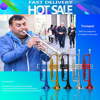 2018 NEW 20'' Bb Beginner Trumpet Brass Student Gold Plated + Care Kit 5 Colors