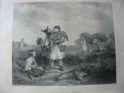 87045-Esel-Donkey-The Pet of the Common-nach Horsley-Stahlstich-engraving