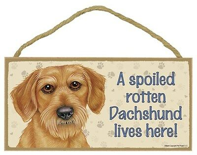 """House is Not a Home without a Dachshund Doxie Sign Plaque Dog 10/""""x5/""""  wirehaired"""