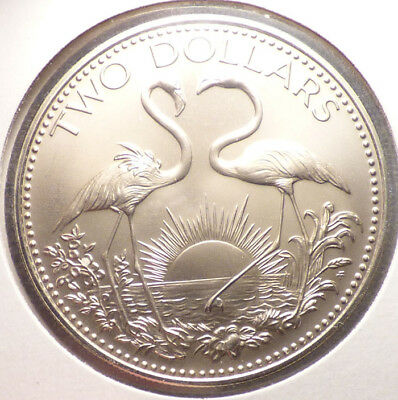 Bahamas 2 Dollars 1974, Large Unc. Coin w/ Uneven Toning, Flamingos, Leggy Birds
