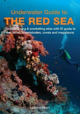 Underwater Guide to the Red Sea by Lawson Wood 9781909612846 (Paperback, 2016)