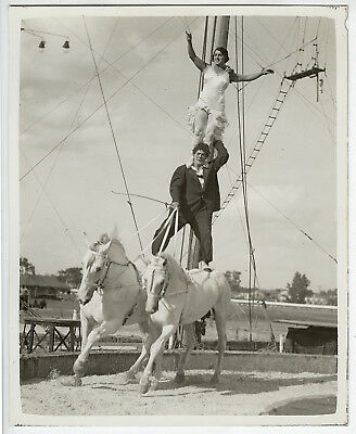 H.A. Atwell VINTAGE STAMPED Circus Horses w/Clown & Pretty Stunt Rider Photo