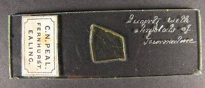 Antique Microscope Slide by Norman. Quartz with crystals of Tourmaline. C.N.Peal