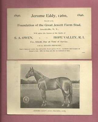 1896 S. A. Owen Hope Valley R.I. HORSE JEROME EDDY JEWETT FARM STUD Image Info